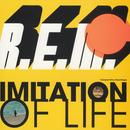 Imitation Of Life (Maxi Single) thumbnail