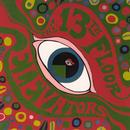 The Psychedelic Sounds Of The Thirteenth Floor Elevators thumbnail