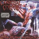 Tomb Of The Mutilated (Explicit) thumbnail