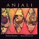 Anjali: Instrumental Meditations For Yoga And The Healing Arts thumbnail