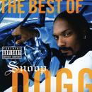 The Best Of Snoop Dogg (Explicit) thumbnail