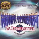 En Los Puritos Huesos - Y Muchos Exitos Mas... thumbnail