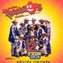 Banda Pequenos Musical: 12 Grandes Exitos, Vol. 2 thumbnail